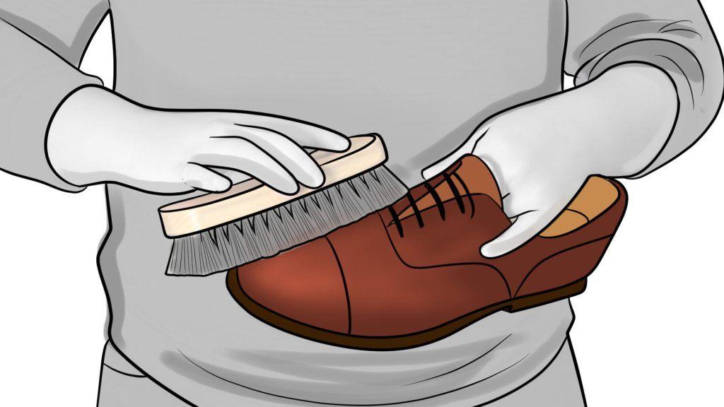 apply shoe polish